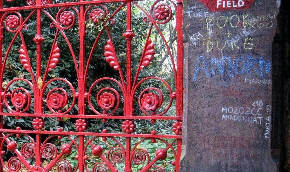 Erdbeer-Zeit oder Blind-Date @ Strawberryfields