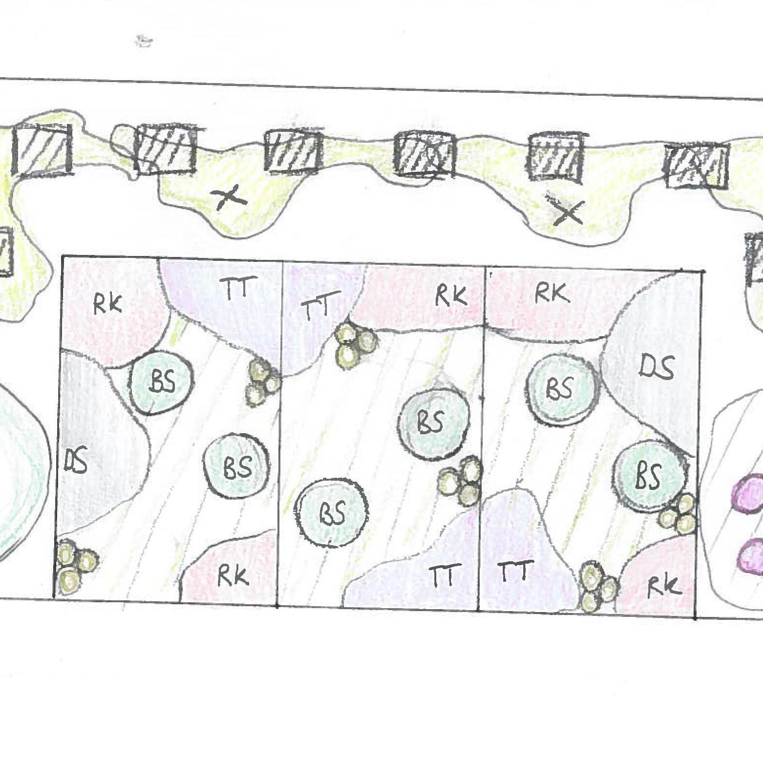 Mülltonnenbox im Vorgarten – Pflanzplan/ Entwurf