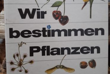 Buchvorstellung – Wir bestimmen Pflanzen