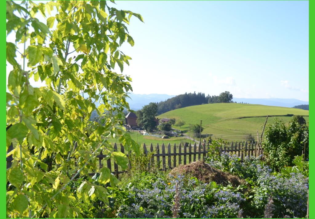 Geschichtliche Entwicklung des Bauerngartens im Schwarzwald ab dem Mittelalter