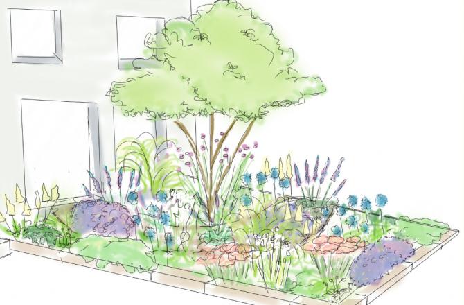 Grün staunen statt grau ärgern – Die klimaangepasste Vorgartengestaltung